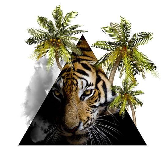"""חולצת היפסטר """"Tiger"""""""