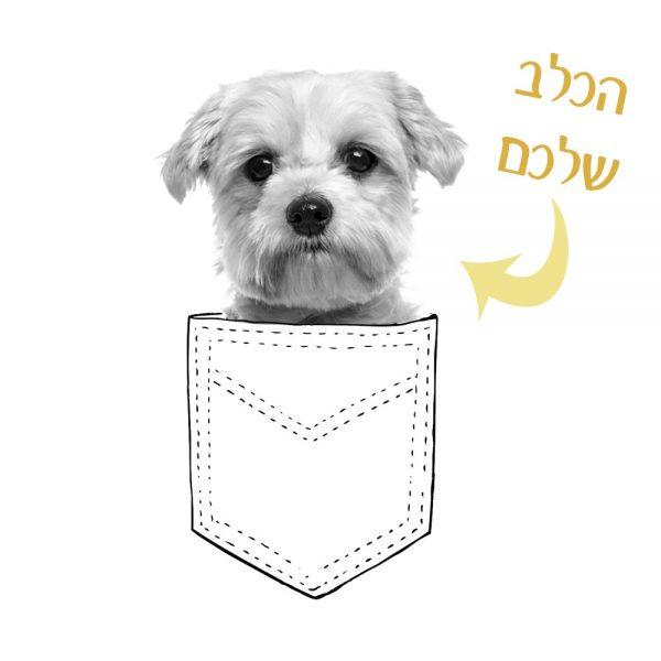 """חולצת כלבים """"PikaBoo"""""""